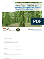 Renewable Energy Guideline on Biomass and Biogas Power Project Development in Indonesia