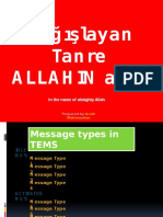 Tems Message Type