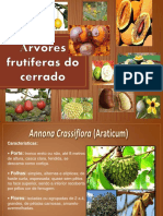 Arvores Frutiferas Do Cerrado 19pg