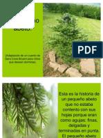 el-pequeo-abeto-1208548893868307-8