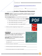 Paramecium Homeostasis Se