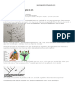 Analisando cladogramas.pdf