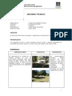 Informe Scout Enero 2014