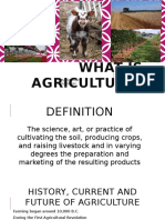 introduction to agricultural industry- sheridan pawlowski