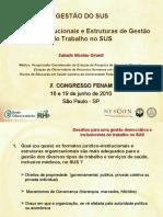 Formas Institucionais e Estruturas de Gestão do Trabalho no SUS