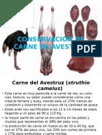 CONSERVACIÓN DE CARNE DE AVESTRUZ.pptx