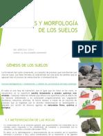4. GENESIS Y MORFOLOGÍA DE LOS SUELOS.pdf
