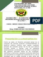 Nuevo Codigo Procesal Penal II