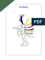 2011-02-18_09-38-24_Apostila_de_Chakras.pdf