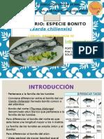 Exposicion de Brpoma Pescadofinalpptx