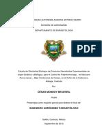 T20589 MONROY BECERRIL, CESAR  TESIS.pdf