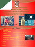 DIAPOSITIVAS-2016 Sustento de Practicas pre profesionales