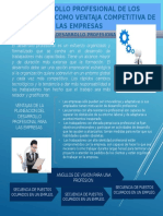 lamina desarrollo 1.pptx
