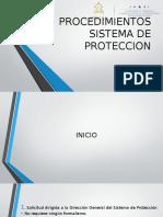 Procedimientos Sistema de Proteccion