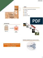 15Fertilización y Gestación 2013