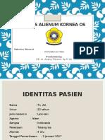 Corpus Alienum Kornea OS
