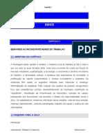ADMINISTRACAO_MUDANCAS & PERSPECTIVAS_CAP 1_INCONSTANTE MUNDO DO TRABALHO.pdf