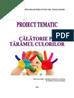 Proiect Tematic CULORI 2