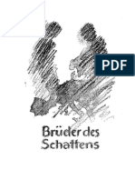 Brueder des Schattens von Heinz Pfeifer