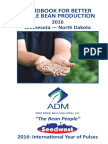 ADM Edible Bean Production