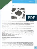 Microemprendimientos - capitulo 2.pdf