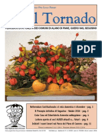 Il_Tornado_677