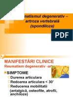 Curs Nr. 6-2 Artroza Vertebrala