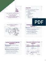 22Secrec y Motil Tracto Dig 2013.pdf