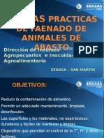 Bpm Mataderos 2015