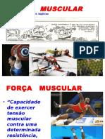 Treinamento Esportivo Força slides