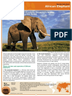 African Elephant Factsheet2007w