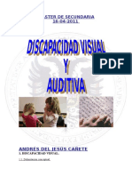 Trabajo Discapacidad Auditiva y Visual