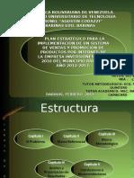 plan-estrategico-implementacion-sistema-ventas-y-promocion-productos-internet-ppt.ppt
