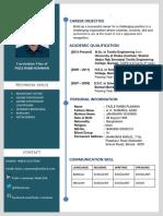 CV Template Final