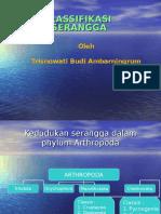 APTERYGOTA_KLSSIFIKASI_TRISNOWATI