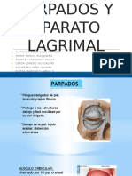 1. Anatomia de Parpados y Aparato Lagrimal.pptx