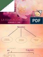 Educacion Basica Bibliografia