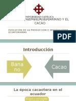 boom bananero y del cacao