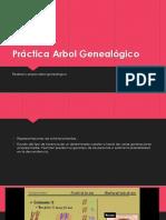 1. Arbol Genealógico