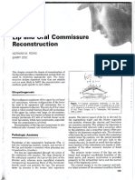 Lip and Commisure Reconstruction
