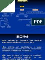 ENZIMAS[1]