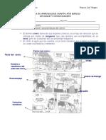 guiacomiclenguaje4basico-120426103834-phpapp01.doc