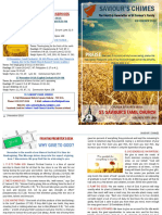 Saviour's Chimes Church Newsletter - November 2016