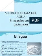 Microbioogia Del Agua