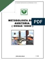 60164477 Manual Auditor Ohsas