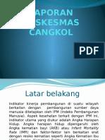 Laporan Pkm Cangkol