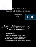 DNA Repair 1 Types of Damage 2012