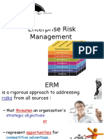 D1 Enterprise Risk Management