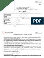 Ficha de Revision de Auditoria