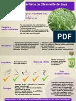ficheHE5citronnelle-java.pdf